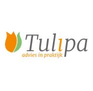 tulipa1[1]